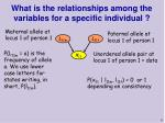 what is the relationships among the variables for a specific individual