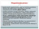organizacja pracy1