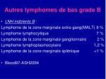 autres lymphomes de bas grade b
