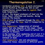 thermoregulation i