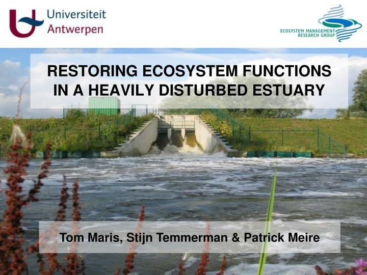 restoring ecosystem functions in a heavily disturbed estuary n.
