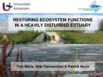 restoring ecosystem functions in a heavily disturbed estuary