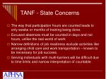 tanf state concerns1