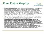 team project wrap up4