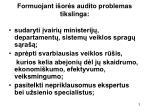 formuojant i or s audito problemas tikslinga