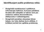 identifikuojant audito problemas reikia