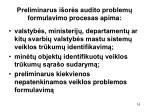 preliminarus i or s audito problem formulavimo procesas apima