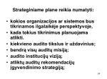 strateginiame plane reikia numatyti