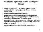 valstyb s ilgalaik s raidos strategijos tikslai2