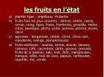 les fruits en l tat4
