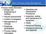 process safety elements