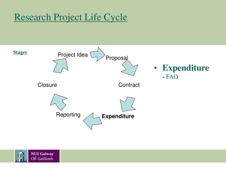 research project life cycle n.