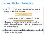 focus niche strategies