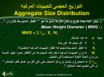 aggregate size distribution