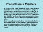principal especie migratoria