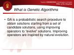 what is genetic algorithms