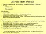 metabolizam energije