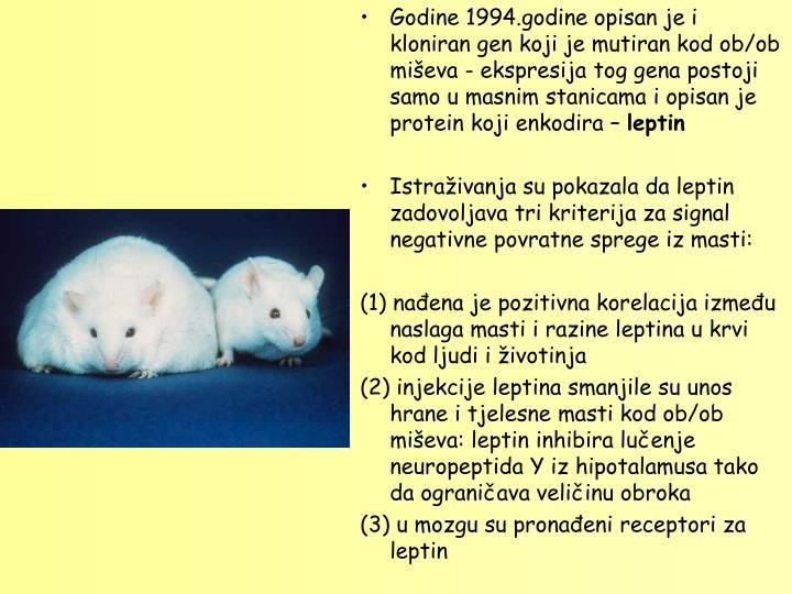 Godine 1994.godine opisan je i kloniran gen koji je mutiran kod ob/ob miševa - ekspresija tog gena postoji samo u masnim stanicama i opisan je  protein koji enkodira –