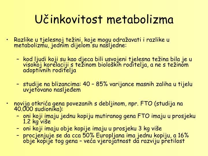 Učinkovitost metabolizma
