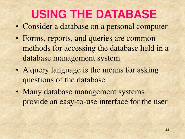 USING THE DATABASE