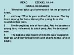 read ezekiel 19 1 4