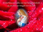 o rode roos van liefde was mijn hart niet bedoeld als een roos van vreugde voor uw ziel