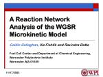 a reaction network analysis of the wgsr microkinetic model