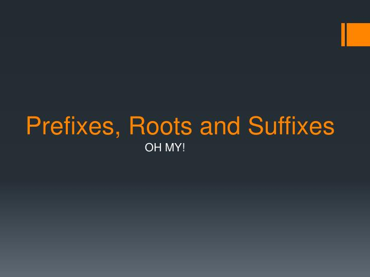 prefixes roots and suffixes n.