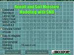 runoff and soil moisture modeling with smr1