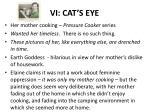 vi cat s eye