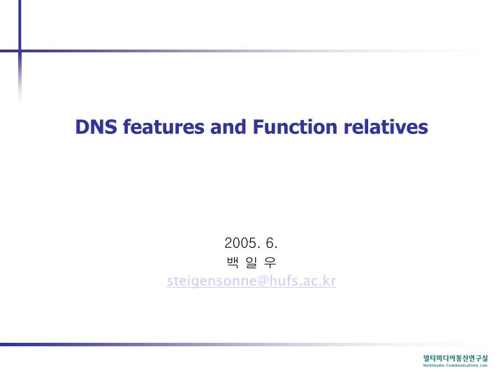 dns features and function relatives n.