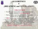 algoritmus v breathing and ventilation