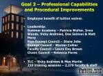 goal 3 professional capabilities and procedural improvements