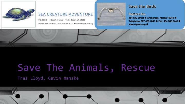 save t he animals rescue n.