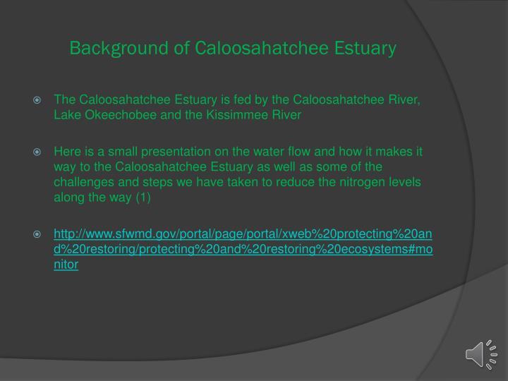 Background of caloosahatchee estuary