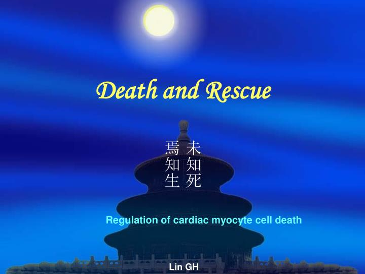 death and rescue n.