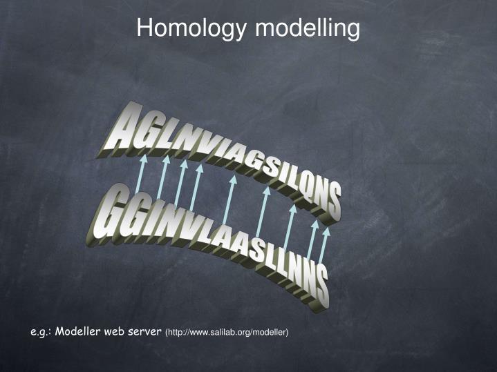 Homology modelling