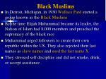 black muslims