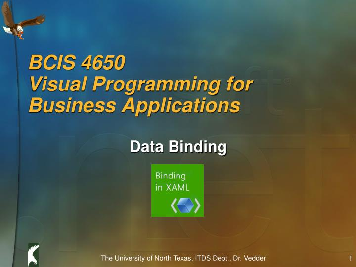 bcis 4650 visual programming for business applications n.