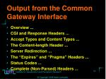 output from the common gateway interface