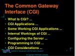 the common gateway interface cgi
