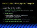 gametopatie embryopatie fetopatie