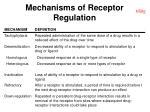 mechanisms of receptor regulation