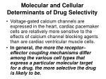 molecular and cellular determinants of drug selectivity2