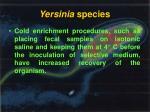 yersinia species1