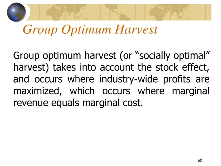Group Optimum Harvest