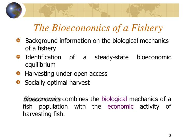 The bioeconomics of a fishery