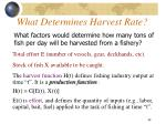 what determines harvest rate