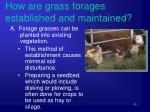how are grass forages established and maintained1