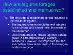 how are legume forages established and maintained